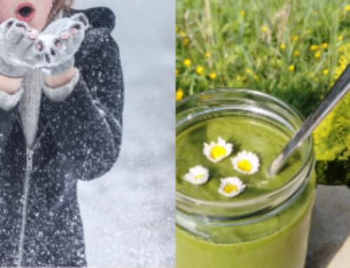 Grüner Smoothie im Winter bei Rheuma und Co?